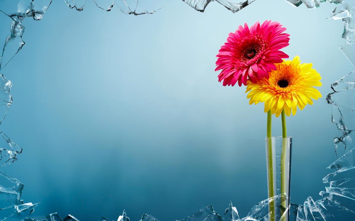 Esempio di ideazione e fotoritocco di vaso con fiori ai corsi di PC Grafica.